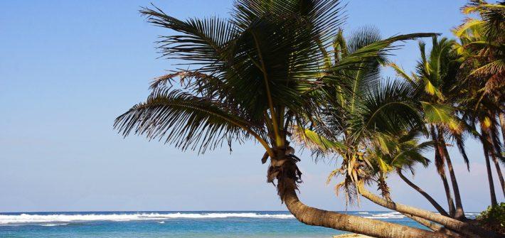 Ideas de viaje familia | recomendaciones viaje familia | Mi mundo Travel planner