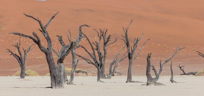 Namibia, desiertos de arena   Mi Mundo Travel Planner