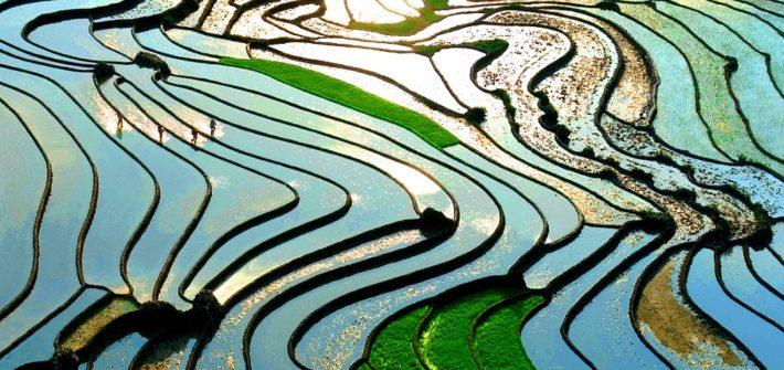 Vietnam, paraíso al que volveré   Viaje a Vietnam   Viaje a Bahia de Halong   Viaje a Sapa   Mi Mundo Travel Planner