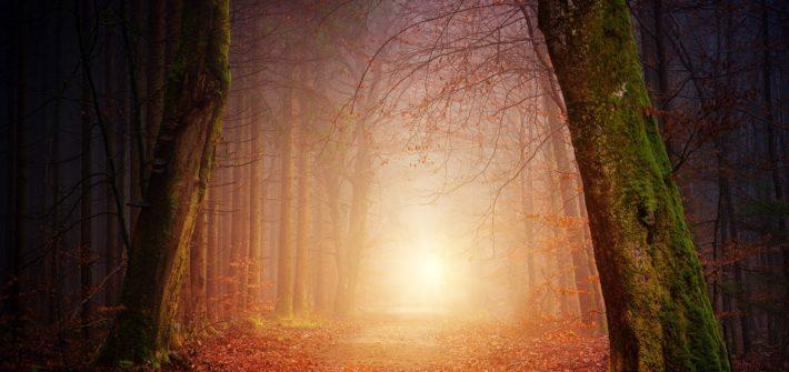 Mis recomendaciones para viajar en otoño | Mi Mundo Travel Planner