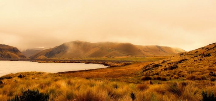 Ecuador, estado puro   Mi Mundo Travel Planner