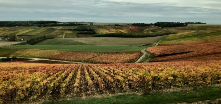Region de Champagne | Mi Mundo Travel Planner